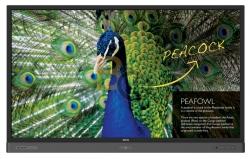 Monitor interaktywny BenQ RP7501K 4K UHD 75